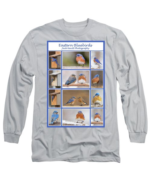 Eastern Bluebird Poster Long Sleeve T-Shirt