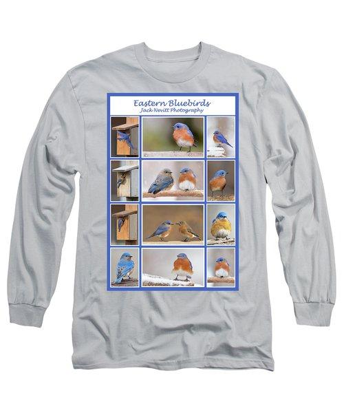 Eastern Bluebird Poster Long Sleeve T-Shirt