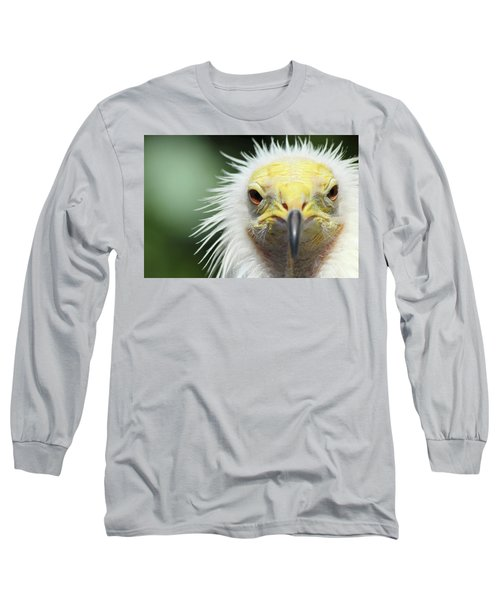 Egyptian Vulture Long Sleeve T-Shirt by David Stasiak