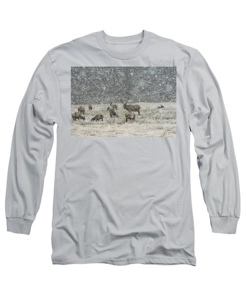 Elk Harem In Falling Snow Long Sleeve T-Shirt