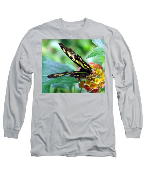 Elusive Butterfly Long Sleeve T-Shirt by Betty Buller Whitehead