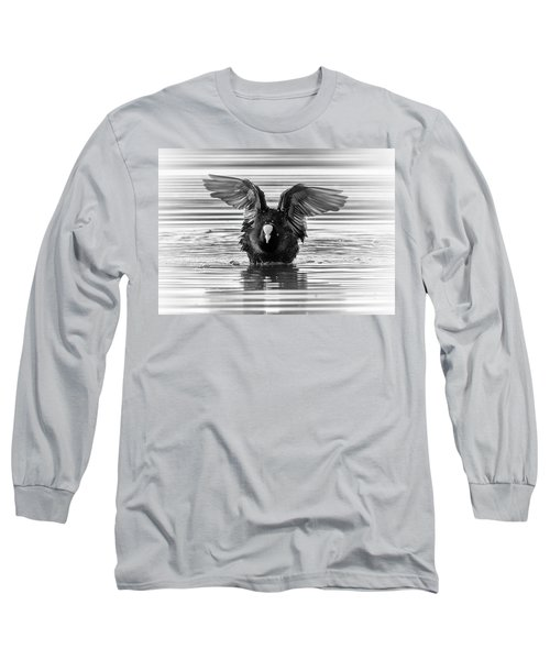Eurasian Or Common Coot, Fulicula Atra, Duck Long Sleeve T-Shirt