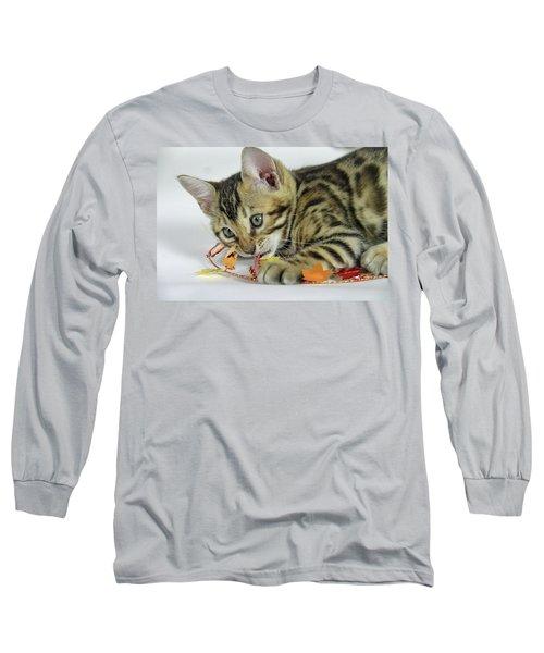 Fall Kitten Long Sleeve T-Shirt by Shoal Hollingsworth