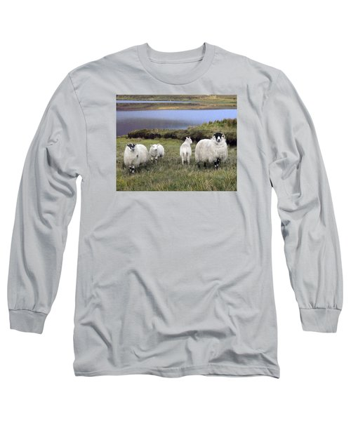 Family Of Sheep Long Sleeve T-Shirt