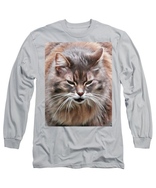 Fat Cats Of Ballard 4 Long Sleeve T-Shirt
