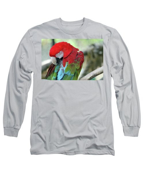 Feathers Long Sleeve T-Shirt