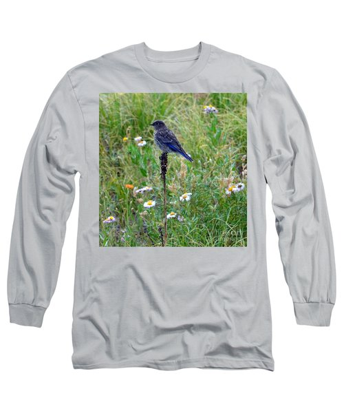 Female Bluebird Long Sleeve T-Shirt