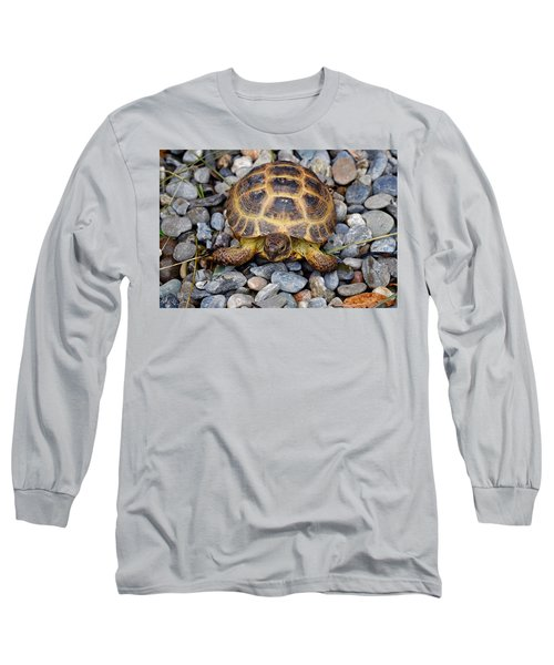Female Russian Tortoise Long Sleeve T-Shirt