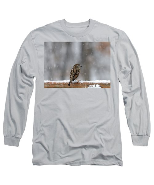 Female Sparrow In Snow Long Sleeve T-Shirt by Diane Giurco