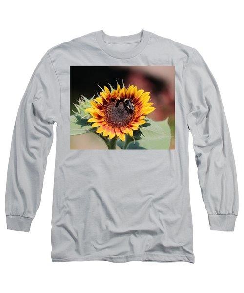 Firecracker Long Sleeve T-Shirt