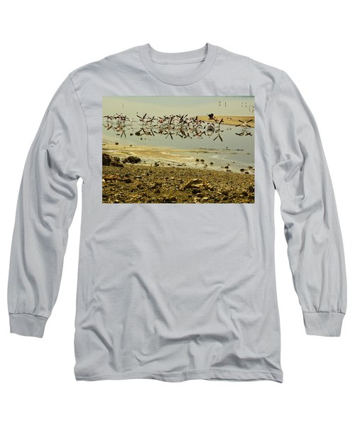 Flamingos Long Sleeve T-Shirt by Patrick Kain