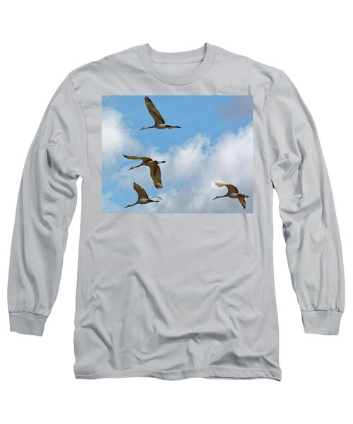 Flight Of The Cranes Long Sleeve T-Shirt