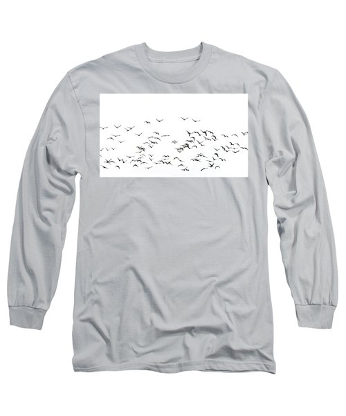 Flock Of Beautiful Migratory Lapwing Birds In Clear Winter Sky I Long Sleeve T-Shirt