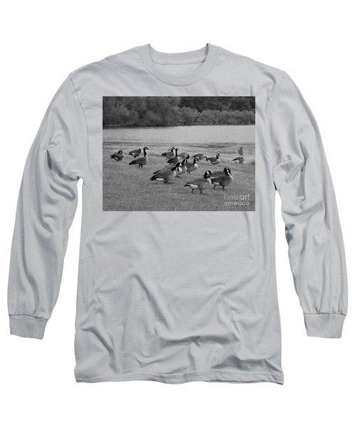 Flock Of Geese Long Sleeve T-Shirt