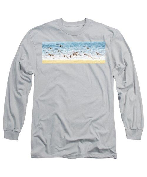 Flying Shore Birds Pano Long Sleeve T-Shirt