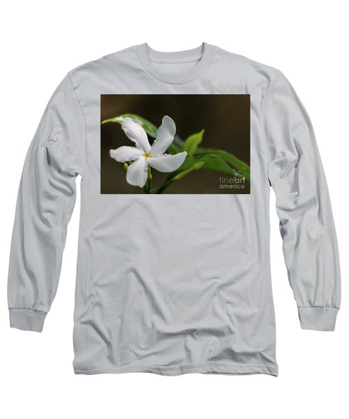 Frangipani Curves Long Sleeve T-Shirt