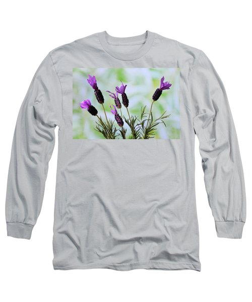 Long Sleeve T-Shirt featuring the photograph French Lavender by Terence Davis