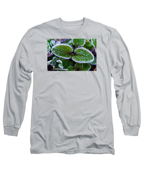 Frosted Edges Long Sleeve T-Shirt