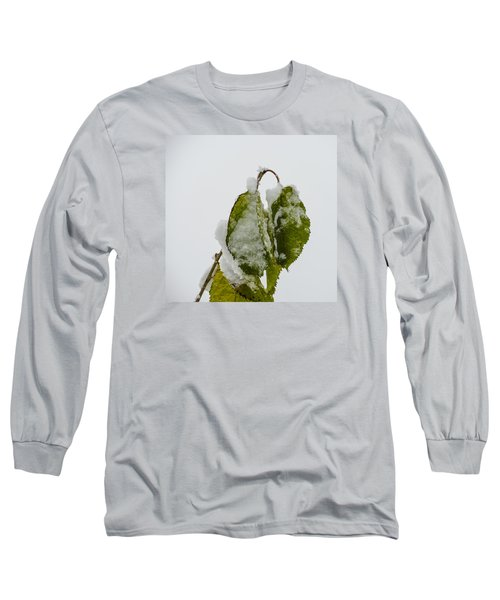 Long Sleeve T-Shirt featuring the photograph Frosty Green Leaves by Deborah Smolinske
