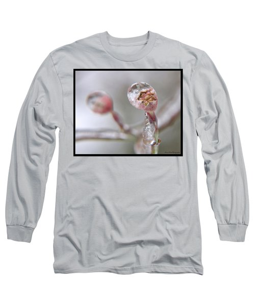 Frozen Dogwood Bud Long Sleeve T-Shirt