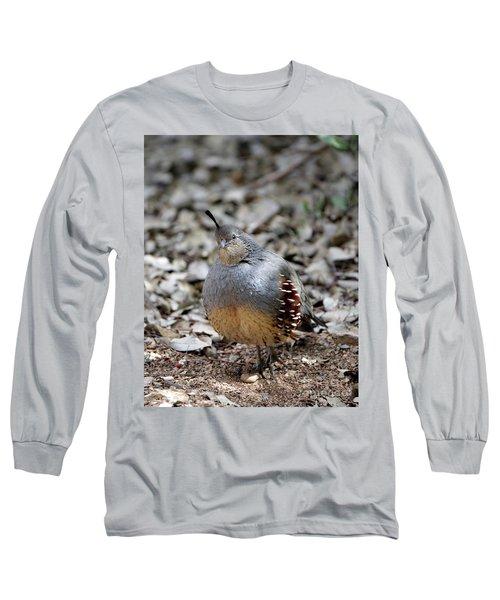 Gambel's Quail Long Sleeve T-Shirt