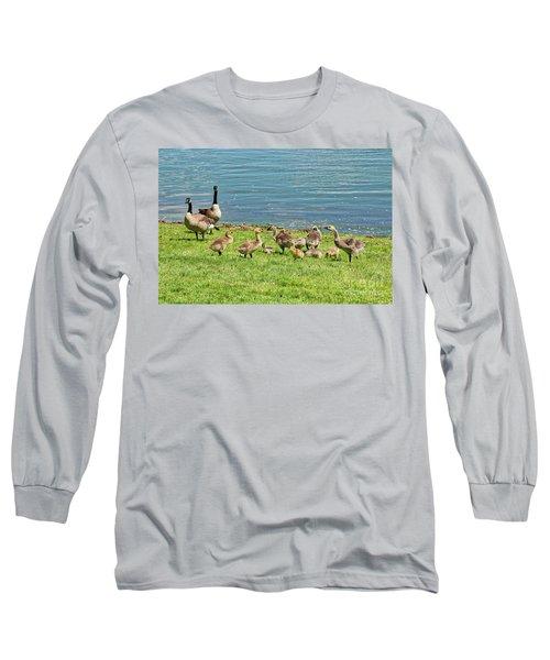 Geese Gathering Long Sleeve T-Shirt