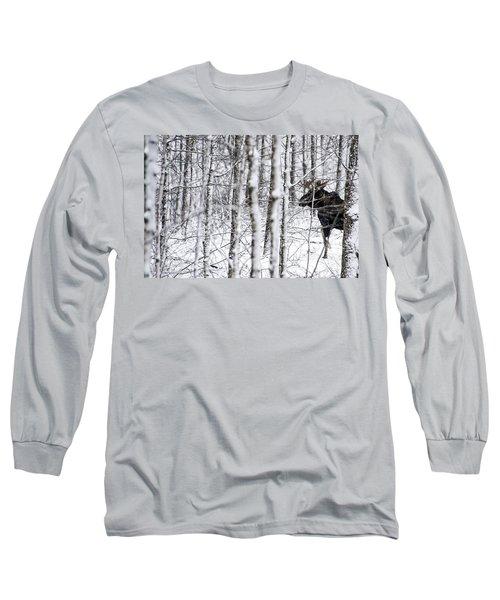 Glimpse Of Bull Moose Long Sleeve T-Shirt