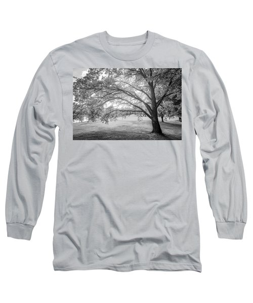 Glowing Tree Long Sleeve T-Shirt by Teemu Tretjakov
