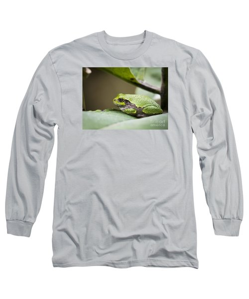 Long Sleeve T-Shirt featuring the photograph Gray Tree Frog - North American Tree Frog by Ricky L Jones