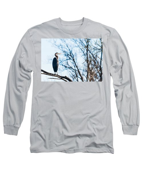 Great Blue Heron Sitting In A Tree Long Sleeve T-Shirt by Edward Peterson