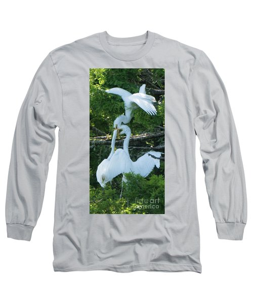 Great Egrets Horsing Around Long Sleeve T-Shirt