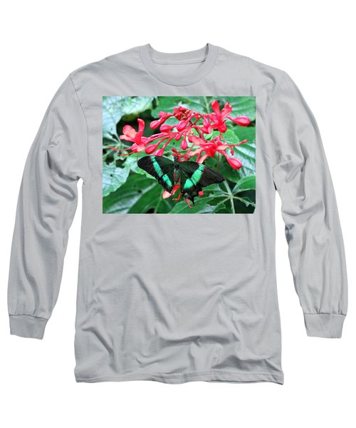 Green Moss Peacock Butterfly Long Sleeve T-Shirt