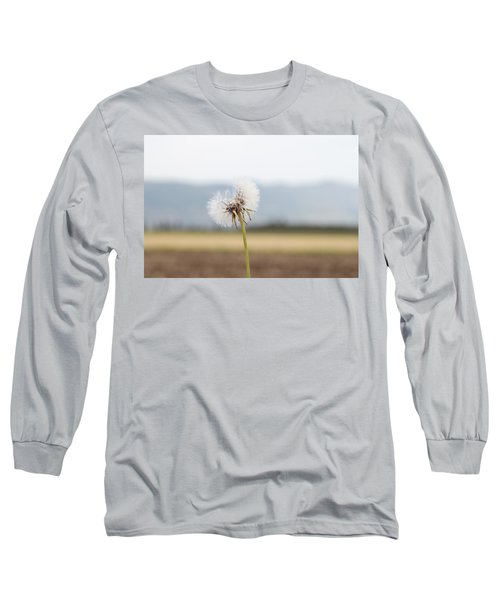 Groundsel In The Wind Long Sleeve T-Shirt by Yoel Koskas