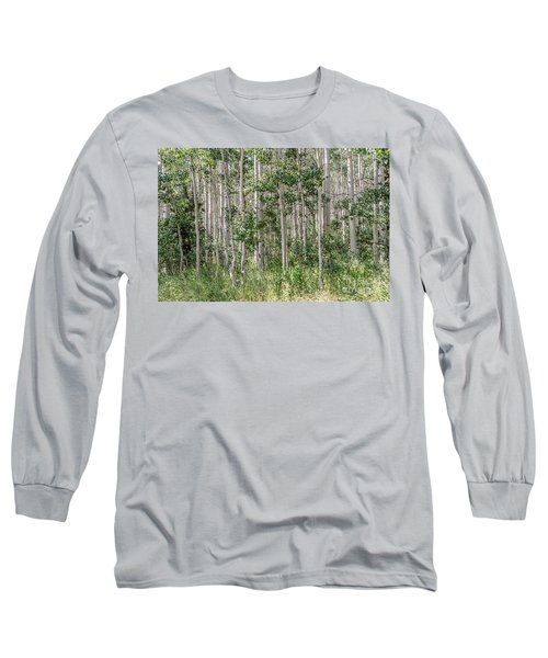 Grove Of Quaking Aspen Aka Quakies Long Sleeve T-Shirt