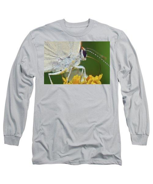 Hairstreak Closeup Long Sleeve T-Shirt