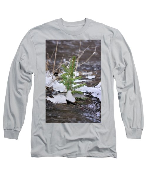 Hanging In There Long Sleeve T-Shirt