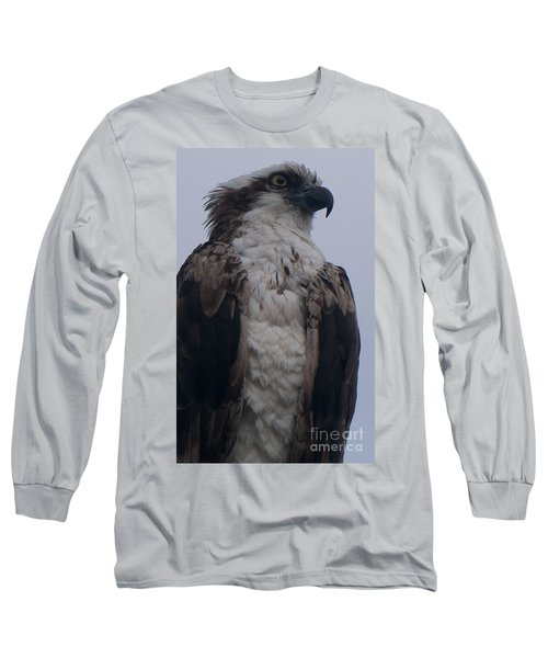 Hawk Looking Into The Distance Long Sleeve T-Shirt