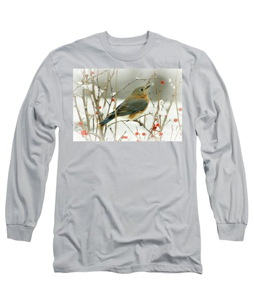Hearts Desire Long Sleeve T-Shirt by Barbara S Nickerson