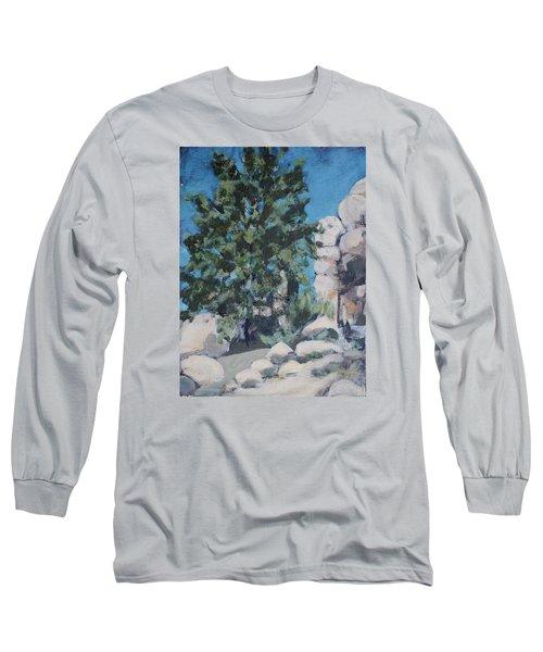 Hidden Valley Long Sleeve T-Shirt by Richard Willson
