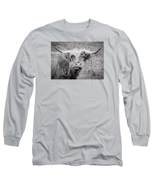 Highland Cow Long Sleeve T-Shirt by Jeremy Lavender Photography