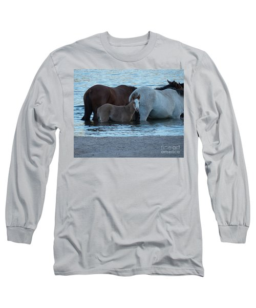 Horse 9 Long Sleeve T-Shirt
