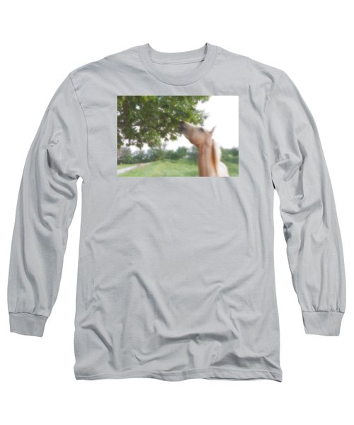 Horse Grazes In A Tree Long Sleeve T-Shirt by Jana Russon