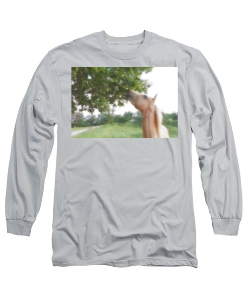 Horse Grazes In A Tree Long Sleeve T-Shirt