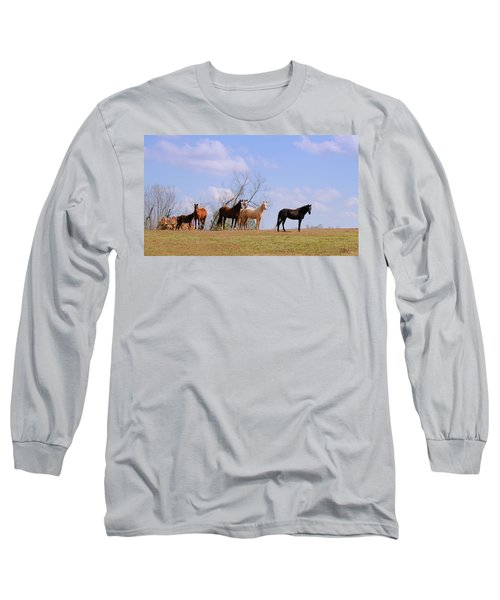 Long Sleeve T-Shirt featuring the photograph Horses On The Hill by Bonnie Willis