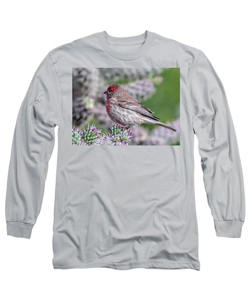 House Finch Male Long Sleeve T-Shirt by Tam Ryan