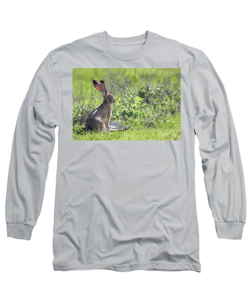 How About Two Out Of Three Long Sleeve T-Shirt