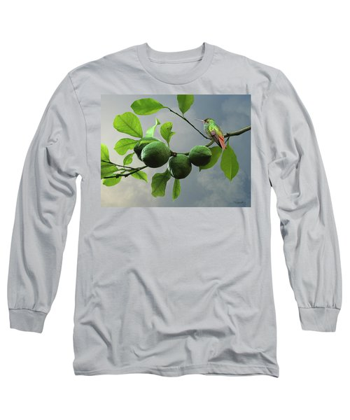 Hummingbird In Lime Tree Long Sleeve T-Shirt