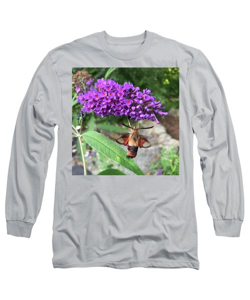 Hummingbird Moth Long Sleeve T-Shirt
