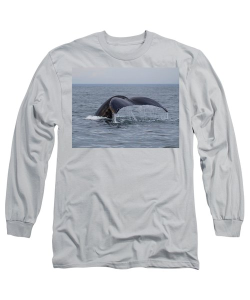 Humpback Whale Long Sleeve T-Shirt by Trace Kittrell