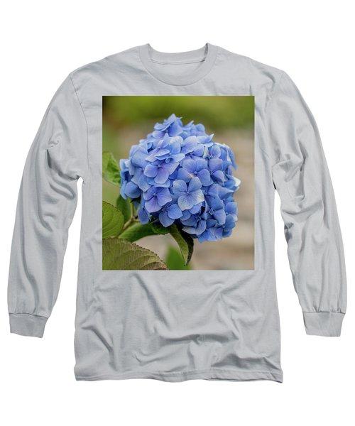 #hydrangea In Blue Long Sleeve T-Shirt